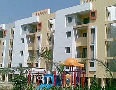 akshaya halton Chpark